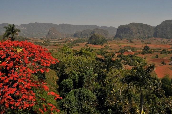 Kuuba luonto